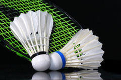 Shuttlecock and badminton Stock Image