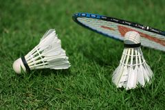 Shuttlecock and badminton Stock Images