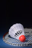 Shuttlecock and Badminton 7 Royalty Free Stock Photos
