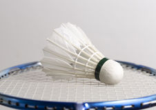 Shuttlecock on Badminton Racket Stock Images