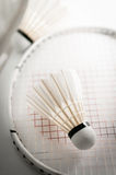 Shuttlecock on badminton racket Stock Photography