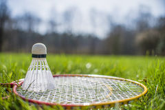 Shuttlecock and badminton racket on grass. Shuttlecock and badminton racket on green grass royalty free stock photo