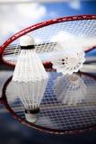 Shuttlecock on badminton racket Stock Photography