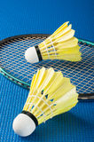 Shuttlecock and badminton racket Royalty Free Stock Photography