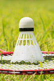 Shuttlecock on a badminton racquet in summer grass. Concept of relaxing summer sports stock images