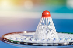 Shuttlecock or birdie on badminton racket close up. Stock Image