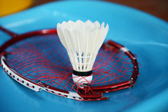 Shuttlecock and broken racket Stock Photography