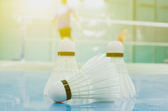 shuttlecock on the floor with badminton player Royalty Free Stock Photo
