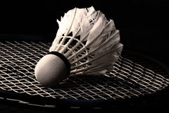 Shuttlecock from goose feathers on badminton racket Stock Images