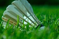 A shuttlecock on grass Stock Images