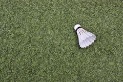 Shuttlecock on green grass. Badminton Royalty Free Stock Images
