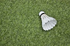 Shuttlecock on green grass. Badminton Royalty Free Stock Photo