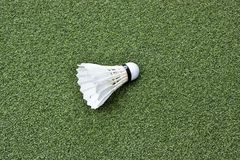 Shuttlecock on green grass. Badminton Stock Photo