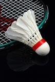 Shuttlecock and racket Stock Photography