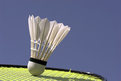 Shuttlecock on racket Royalty Free Stock Image