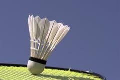 Shuttlecock on racket Royalty Free Stock Image