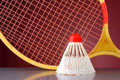Shuttlecock and racket badminton Royalty Free Stock Photo
