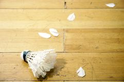 Shuttlecock On Wooden Floor Royalty Free Stock Image
