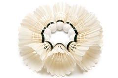 shuttlecocks группы badminton Стоковое фото RF