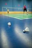 shuttlecocks игроков судов badminton Стоковые Фото