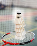 Shuttlecocks and badminton racket Royalty Free Stock Image