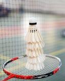 Shuttlecocks and badminton racket Royalty Free Stock Image