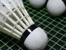 Shuttlecocks on a badminton racket Royalty Free Stock Photo