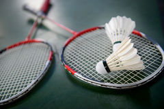 Shuttlecocks and badminton racket Royalty Free Stock Images