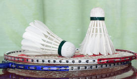 Shuttlecocks and badminton racket. Stock Images