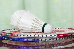 Shuttlecocks and badminton racket. Royalty Free Stock Photography