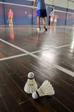Shuttlecocks do badminton-dois nas cortes de badminton imagem de stock