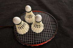 Shuttlecocks with racket for badminton game Stock Images
