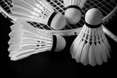 Shuttlecocks and racket Royalty Free Stock Image