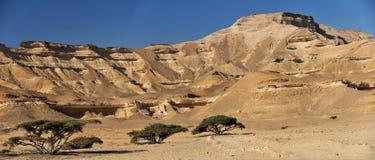 Shuwaymiyah del lecho de un río seco fotografía de archivo