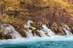 Shuzheng waterfall jiuzhaigou scenic Royalty Free Stock Images