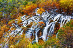 Shuzheng waterfall jiuzhaigou scenic Royalty Free Stock Photo
