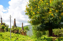 Shwe Indein Pagoda in Inle Lake, Shan State, Myanmar. The Indein pagoda complex is situated in the Western part of Inle Lake. There are about 1000 stupas in the Stock Images