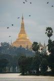 Shwedagon dans le coucher du soleil Image stock