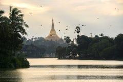 Shwedagon im Sonnenuntergang Lizenzfreie Stockfotografie