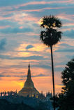 Shwedagon im Sonnenuntergang Stockbilder