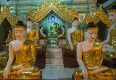 Free Shwedagon Pagoda In Yangon, Myanmar Royalty Free Stock Image - 101372326
