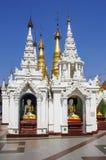 Shwedagon Pagoda 3 Stock Image