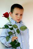 Shy boy giving flowers. Adorable and shy 3 years old boy with flowers stock images