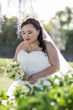 Shy bride Stock Image
