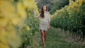 Shy girl goes along the grape rows. Barefoot stock footage