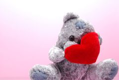 Shy teddy Stock Images