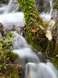 Shy Waterfall. Wonderful cascade little capture in Plitvice Lakes, Croatia royalty free stock image