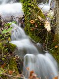 Shy Waterfall. Wonderful cascade little capture in Plitvice Lakes, Croatia royalty free stock images