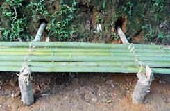 Siège en bambou dans la jungle image libre de droits