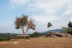 Sièges et arbres au ciel Photo libre de droits